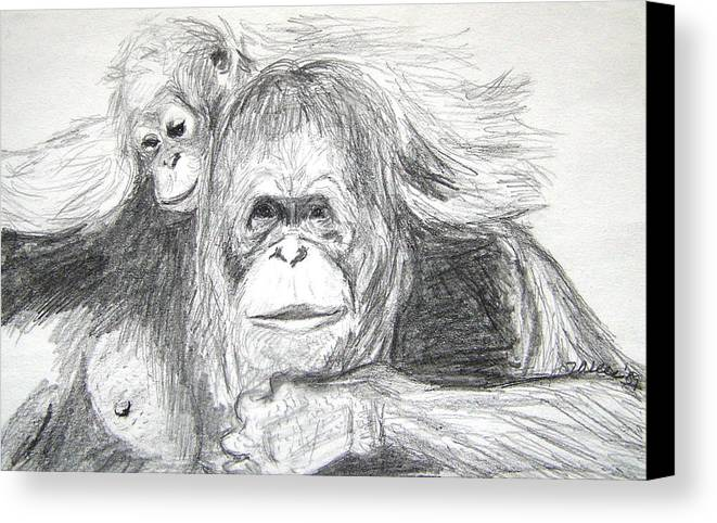 Wildlife Canvas Print featuring the drawing Gorillas by Vallee Johnson