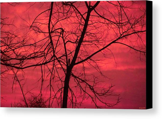 Sunset Canvas Print featuring the photograph Hello Evening by Evelyn Patrick