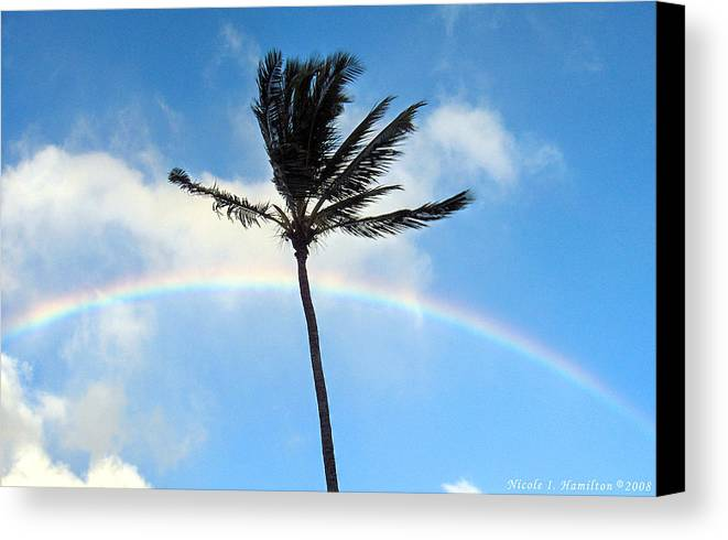 Palm Tree Canvas Print featuring the photograph Palm Tree In The Sky by Nicole I Hamilton