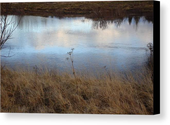 Nature Canvas Print featuring the photograph Reflections by Marilynne Bull