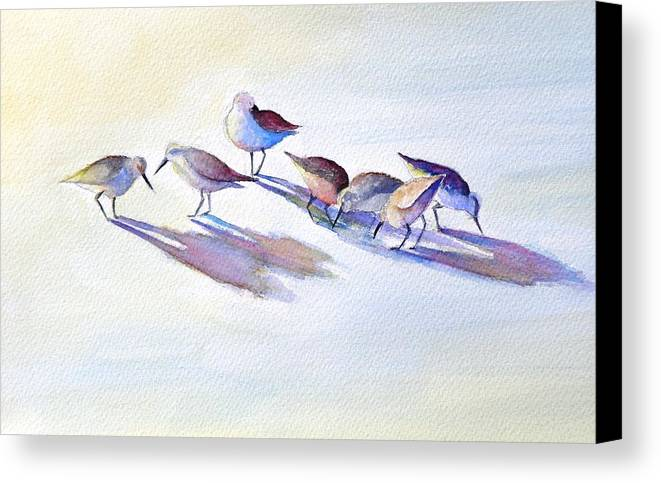 Wildlife Canvas Print featuring the painting Shorebirds by Dorothy Nalls
