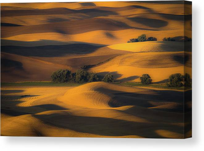 Palouse Canvas Print featuring the photograph Autumn Of Rolling Hills by Eunice Kim