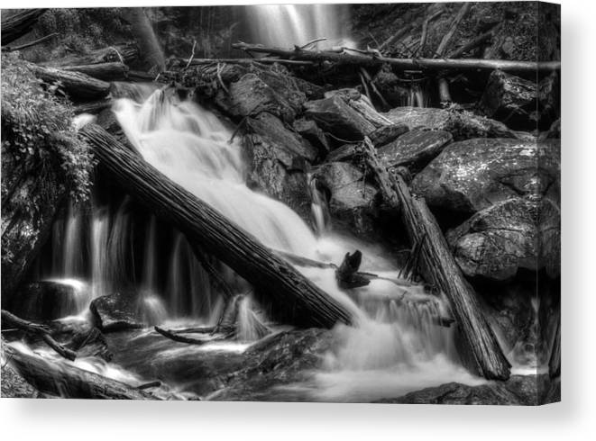 Below Anna Ruby Falls In Black And White Canvas Print featuring the photograph Below Anna Ruby Falls In Black And White by Greg and Chrystal Mimbs