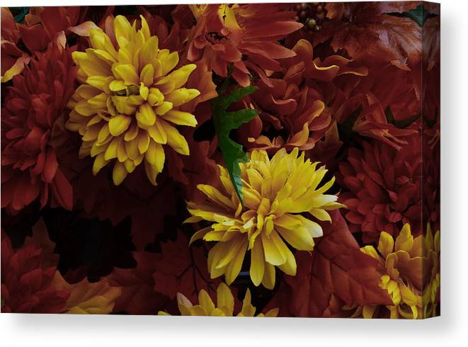 Flower Canvas Print featuring the photograph Green Leaf by Tony Ambrosio