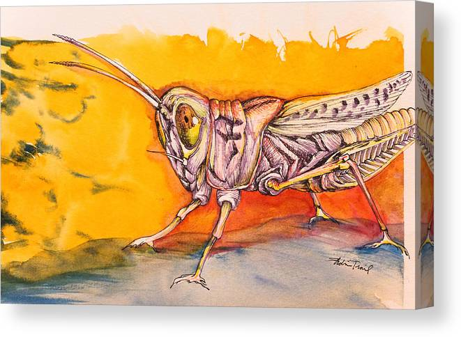 Watercolor Canvas Print featuring the painting Hopper by Adria Trail