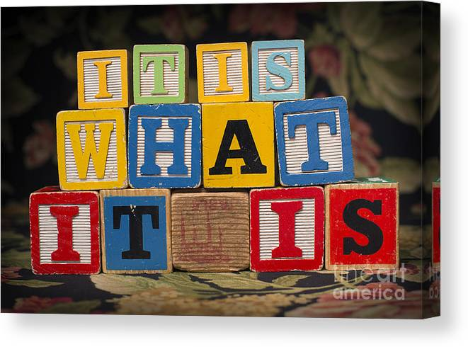 It Is What It Is Canvas Print featuring the photograph It Is What It Is by Art Whitton