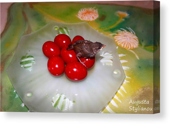 Augusta Stylianou Canvas Print featuring the photograph Red Eggs Bird And Flowers by Augusta Stylianou