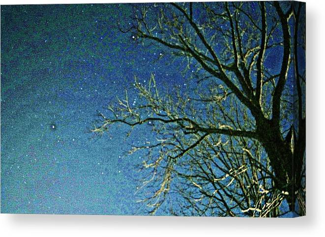 Sky Canvas Print featuring the photograph Solemn Sky by Paul Wilford