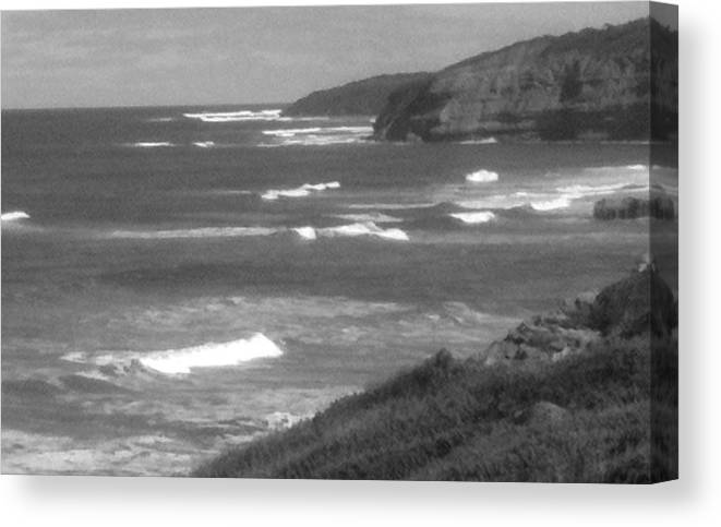 Australia Canvas Print featuring the photograph Windswept Headlands by Amanda Holmes Tzafrir