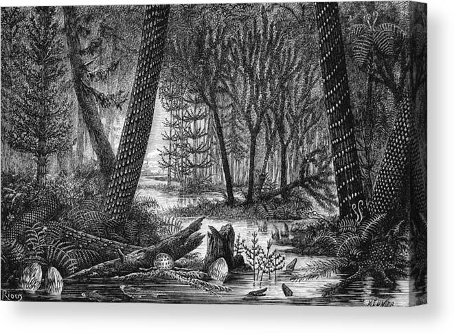 Carboniferous Swamp 19th Century Artwork Canvas Print Canvas Art By