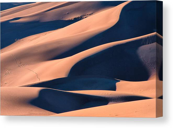 Colorado Canvas Print featuring the photograph Dune 3 by Jennifer Litchfield