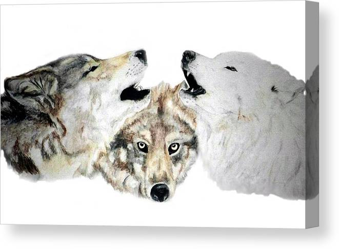 Wolves Canvas Print featuring the painting Howling by Debra Sandstrom