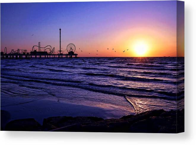 Galveston Canvas Print featuring the photograph Seagull Sunrise by Judy Vincent