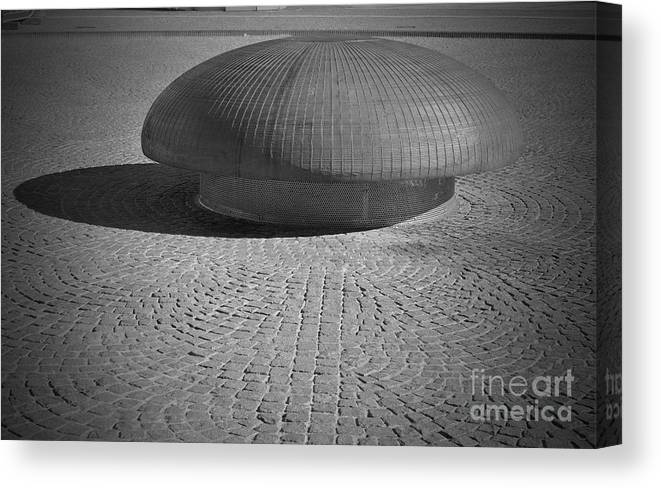 Mushroom Canvas Print featuring the photograph Shrooming In Leipzig by Jost Houk