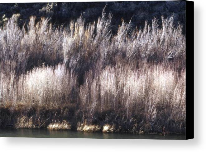 Landscape Canvas Print featuring the photograph River Sage by Lynard Stroud