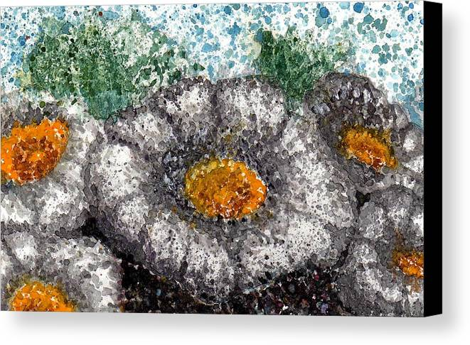 Watercolor Canvas Print featuring the painting White Saguaro Cactus Blossom by Cynthia Ann Swan