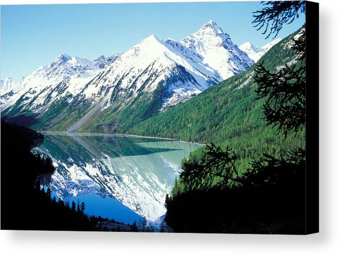 Forestland; Hills & Mountains; Landscape; Nature; Nobody; Outdoors; Outside; River; Scenery; Scenic; Scenics; Snow; Trees; Water; Woodland Canvas Print featuring the photograph Altai Mountains by Anonymous