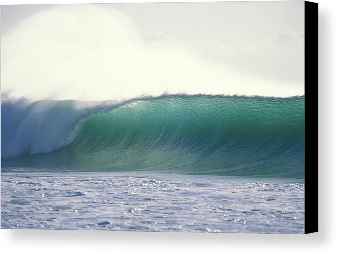 Sea Swell Canvas Print featuring the photograph Green Feather by Sean Davey
