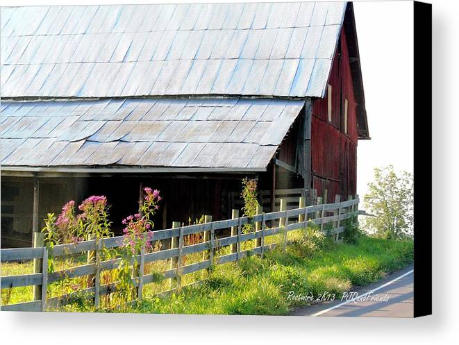 Ironweed Fenceline Canvas Print featuring the photograph Ironweed Fenceline by PJQandFriends Photography