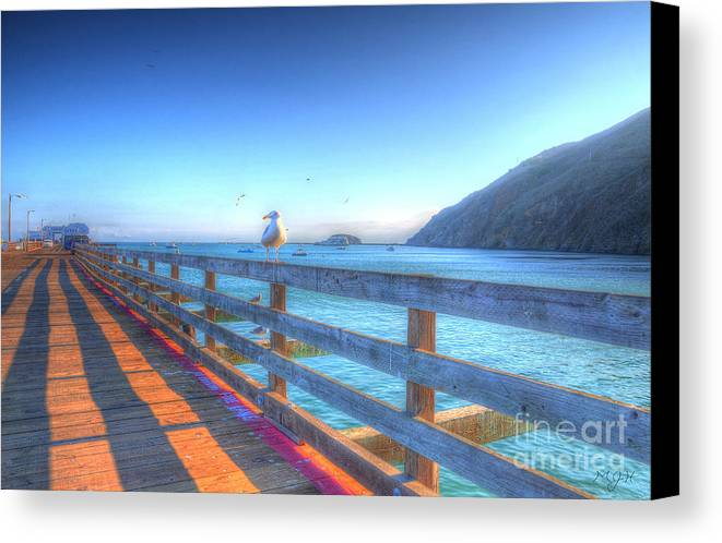 Seagulls Canvas Print featuring the photograph Seagulls And Ocean by Mathias