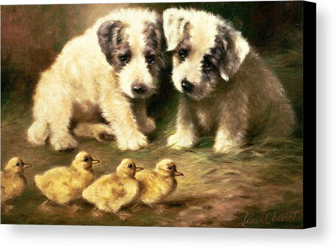 Dog Canvas Print featuring the painting Sealyham Puppies And Ducklings by Lilian Cheviot