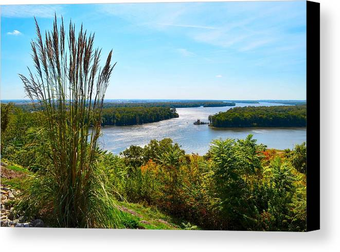 Mississippi River Scene Canvas Print featuring the photograph The Confluence by Julie Dant