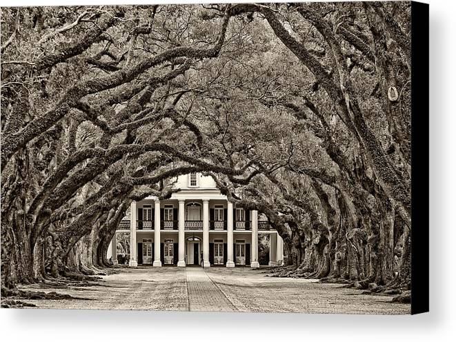 Oak Alley Plantation Canvas Print featuring the photograph The Old South Sepia by Steve Harrington