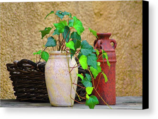 Vase Canvas Print featuring the photograph The Old Times by Carolyn Marshall