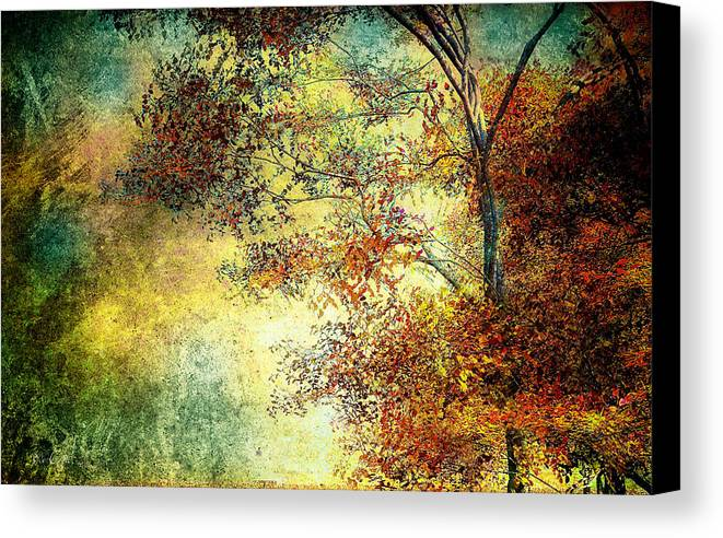 Landscape Canvas Print featuring the photograph Wondering by Bob Orsillo
