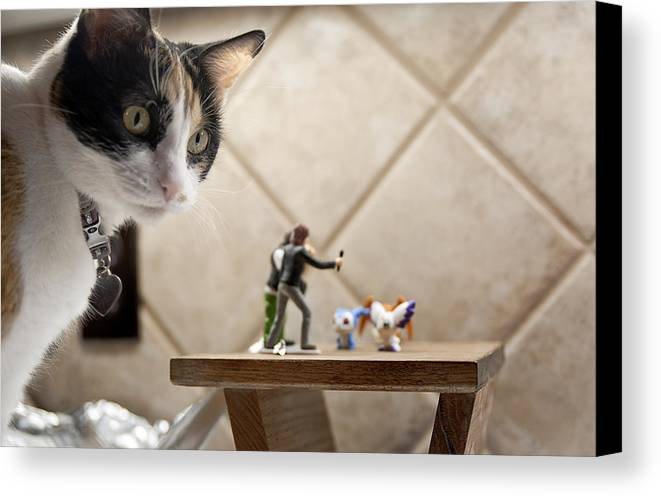 American Shorthair Canvas Print featuring the photograph Catzilla by Melany Sarafis