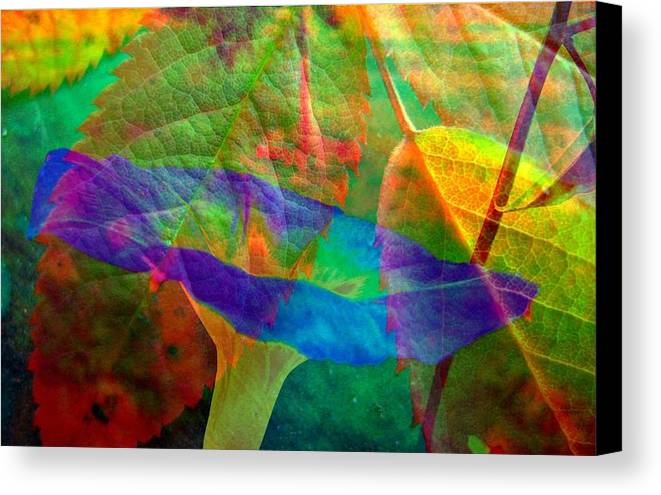 Abstract Canvas Print featuring the photograph Colors Of Autumn by Shirley Sirois