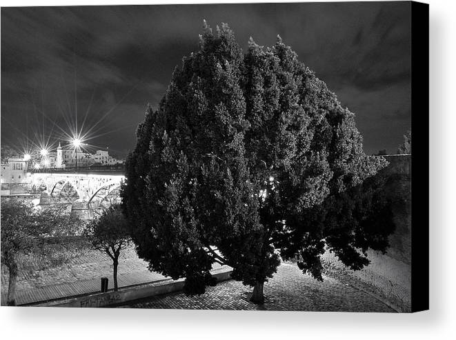 Landscapes Canvas Print featuring the photograph Guardian Of The Bridge by Nuno Lorador Pires