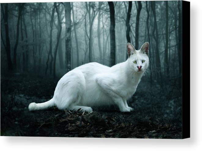 Tonga Canvas Print featuring the digital art Tonga by Big Cat Rescue