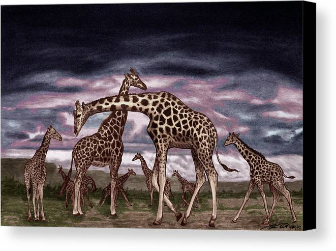 The Herd Canvas Print featuring the drawing The Herd by Peter Piatt