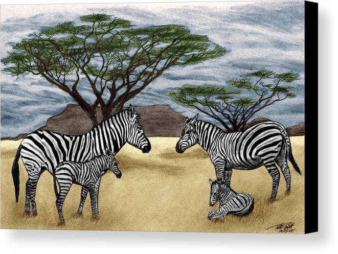 Zebra African Outback Canvas Print featuring the drawing Zebra African Outback by Peter Piatt