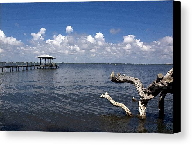 Driftwood Canvas Print featuring the painting Indian River Lagoon by Allan Hughes