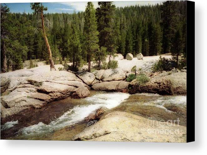 Stream Canvas Print featuring the photograph Sierra Nevada Mountain Stream by Ted Pollard