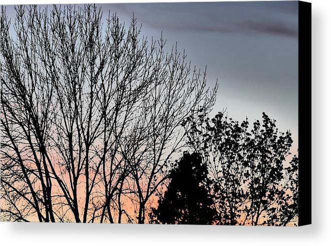 Idaho Sunsets Skyflowers Paul Stanner Canvas Print featuring the photograph Horizon by Paul Stanner