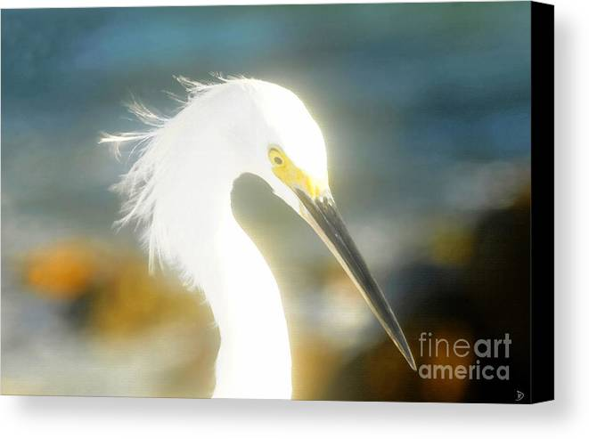 Snowy Egret Canvas Print featuring the painting Beautiful In White by David Lee Thompson
