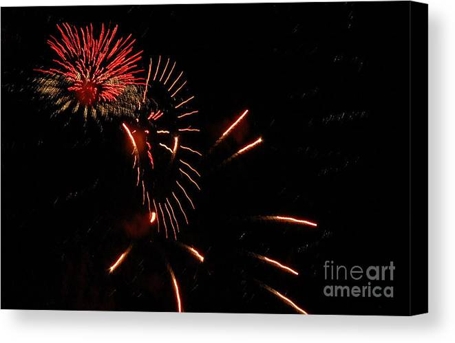 4th Of July Canvas Print featuring the photograph Cat Burst by Norman Andrus