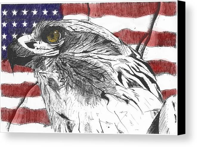 Patriotic Canvas Print featuring the drawing Eagle by Nathaniel Hoffman