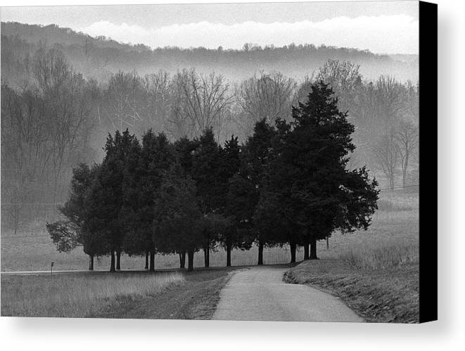Evergreen Canvas Print featuring the photograph Evergreen Mist by Paul Trunk