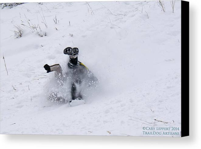 Snow Canvas Print featuring the photograph Face Plant In The Snow by Cary Leppert