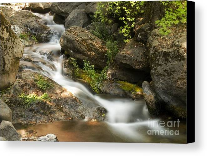 Landscape Canvas Print featuring the photograph Going To Deer Creek by Richard Verkuyl