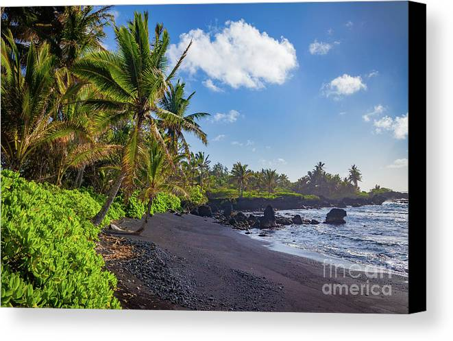 America Canvas Print featuring the photograph Hana Bay Palms by Inge Johnsson