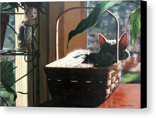 Cat Canvas Print featuring the painting Her Basket by Sandra Chase