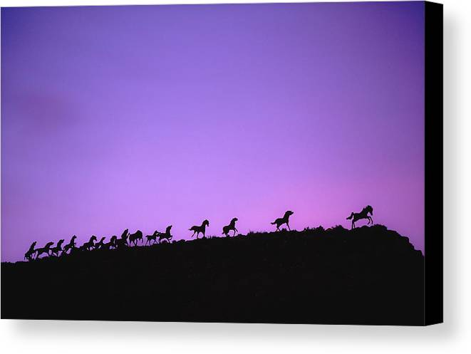 Wild Horses Canvas Print featuring the photograph Horse Sculpture 10 by Mike Penney