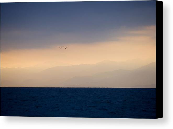 Ocean Canvas Print featuring the photograph In Flight by Brad Rickerby