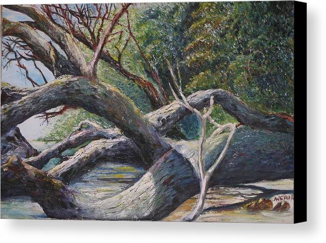 Landscape Canvas Print featuring the painting Lazy Afternoon by Wendy Chua