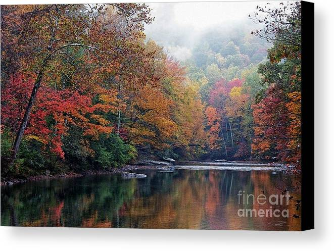 Fall Color Canvas Print featuring the photograph Monongahela National Forest by Thomas R Fletcher